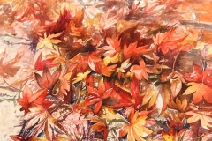 007-Autumn-leaves