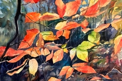 005-Autumn-leaves-1